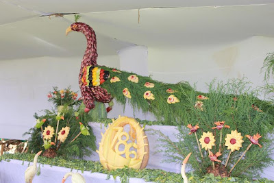 Ooty Vegetable Show Peacock Photos