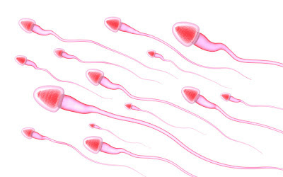Entire Genetic Sequence of Individual Human Sperm Determined