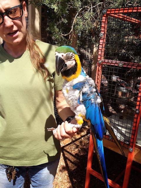 Best Friends Animal Society Sanctuary Kanab Utah