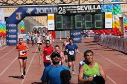 Maratón 2012