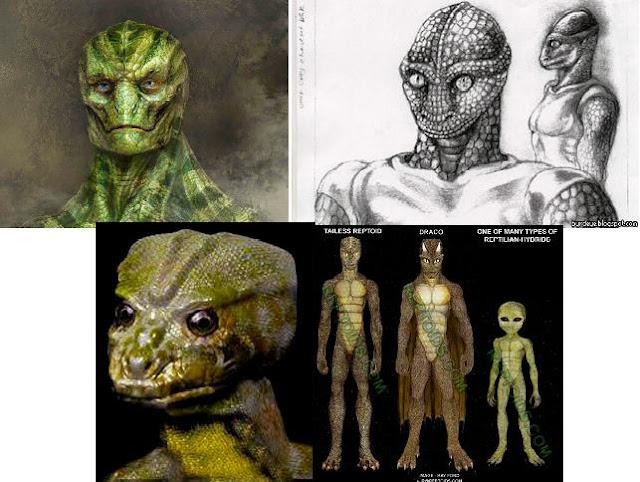 despertando conciencias  qu u00e9 son los reptilianos