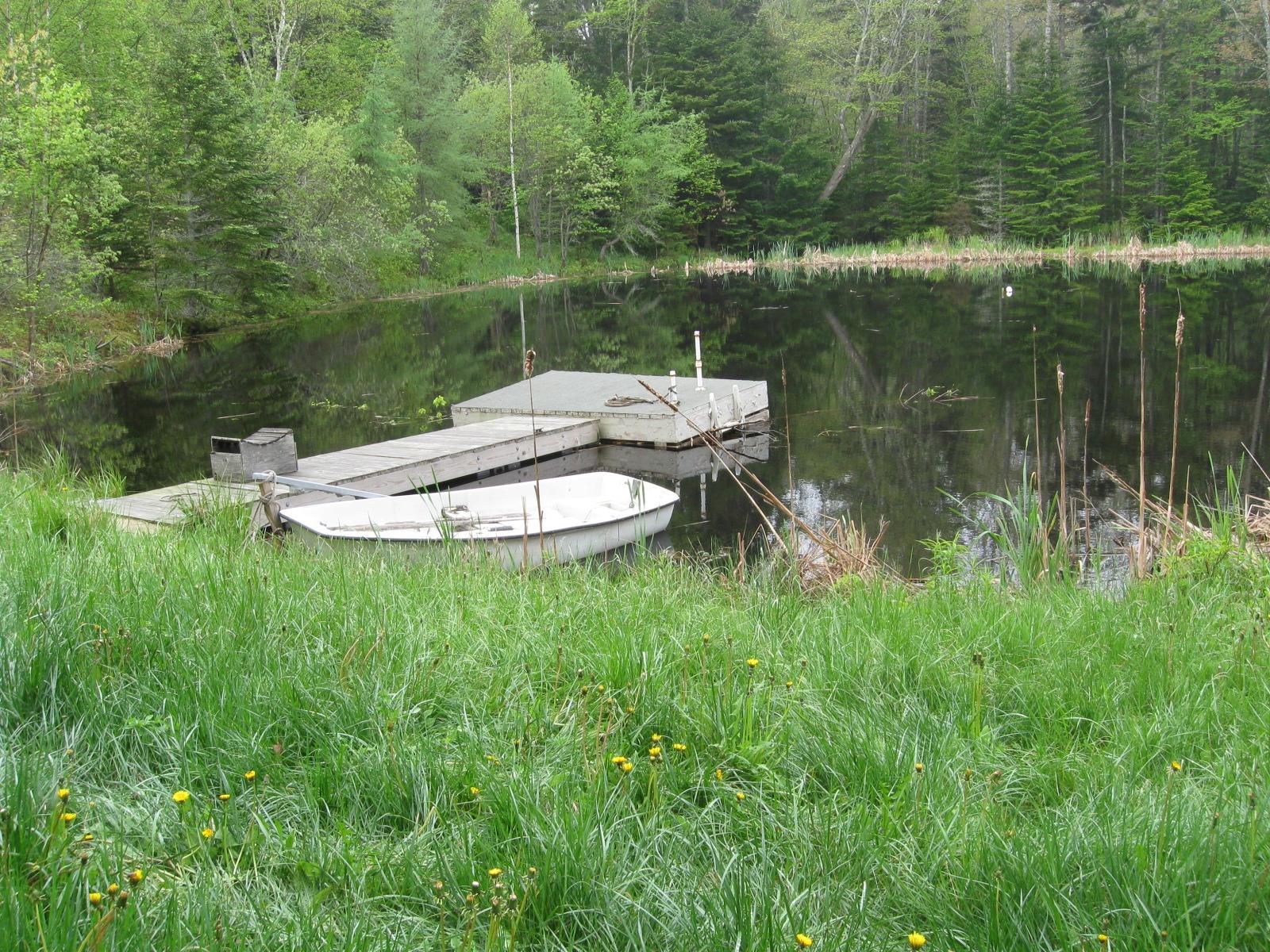 Da da da da life goes on what i did last summer part 1 for Small pond dock plans