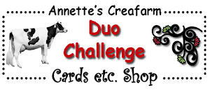 I design for Duo-challenge Blog