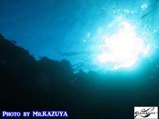 パラオ ダイビング ブルーホール 太陽 光