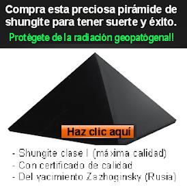 SHUNGITE PROTECTOR Y BENÉFICO