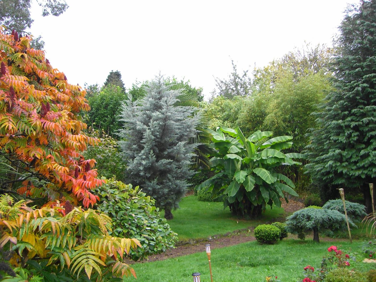 Sakujade jardin normand couleurs d 39 automne for Le jardin normand