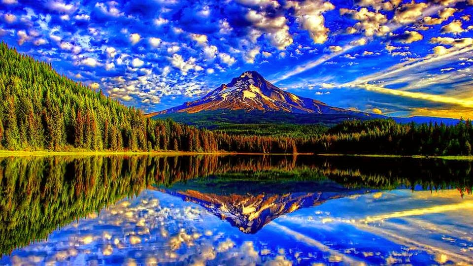 The Most Beautiful Nature Reflection S Design Gallery
