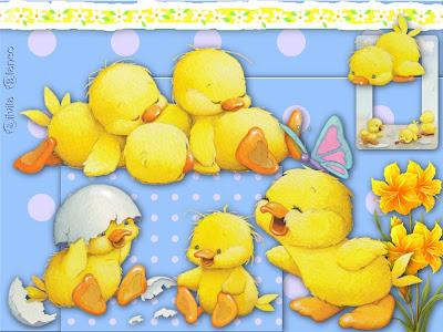 bebebysilvita Fotos e Imagenes de cumpleaños para bebes...
