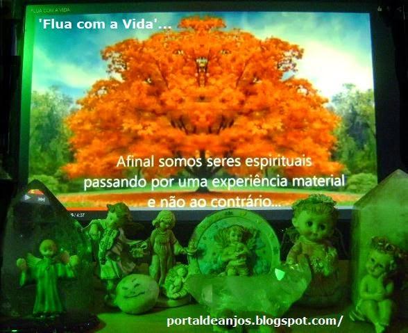 'Flua com a Vida'.