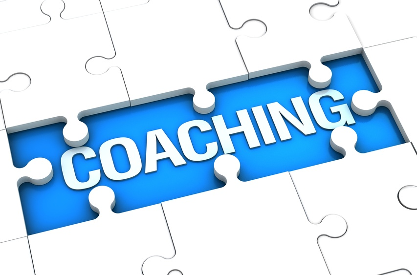 How To Run Your Reputable Business Coaching Website The Right Way