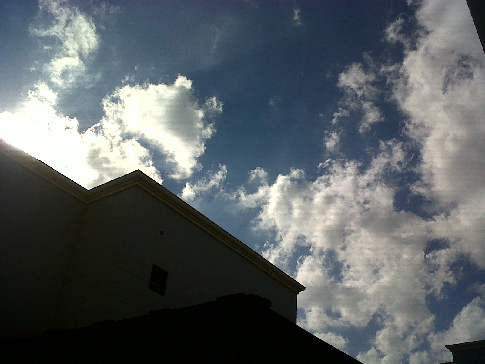 Its A Beautiful Day!