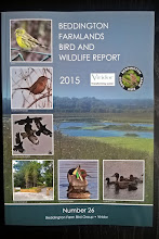 BEDDINGTON FARMLANDS BIRD AND WILDLIFE REPORT 2016