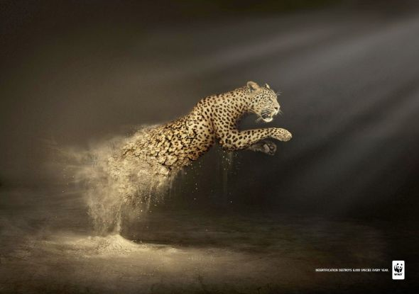 world wildlife fund ad Place an ad advertisement world wildlife fund   world wildlife fund  big cat reserve to share its lions, tigers, cougars and leopards with the public by ryan gillespie nov 9, 2017 .