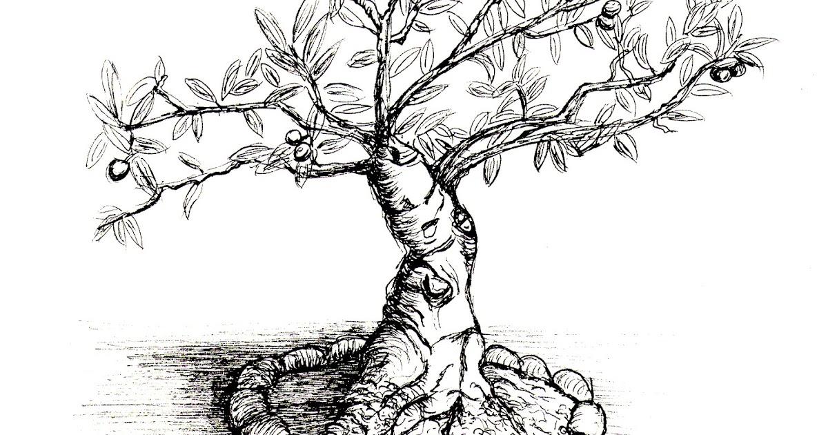 Dessins de miss lilou palestine l 39 onu la naissance d - Dessin arbre nu ...