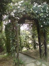 entrada para meu jardim