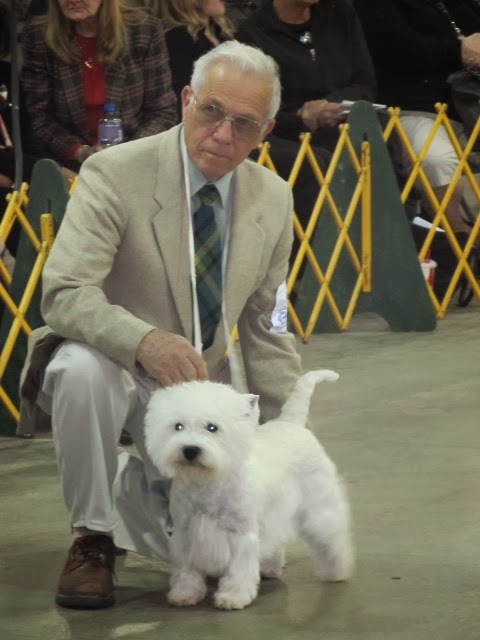 Golden Gate Kennel Club Dog Show – 01/25/14 – 01/26/14