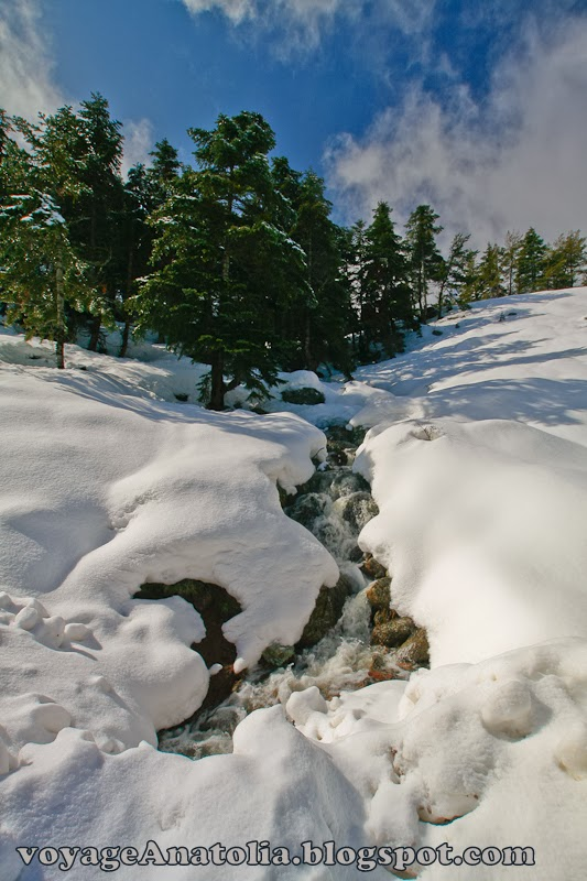 Snowmelt at Bolu Mountains