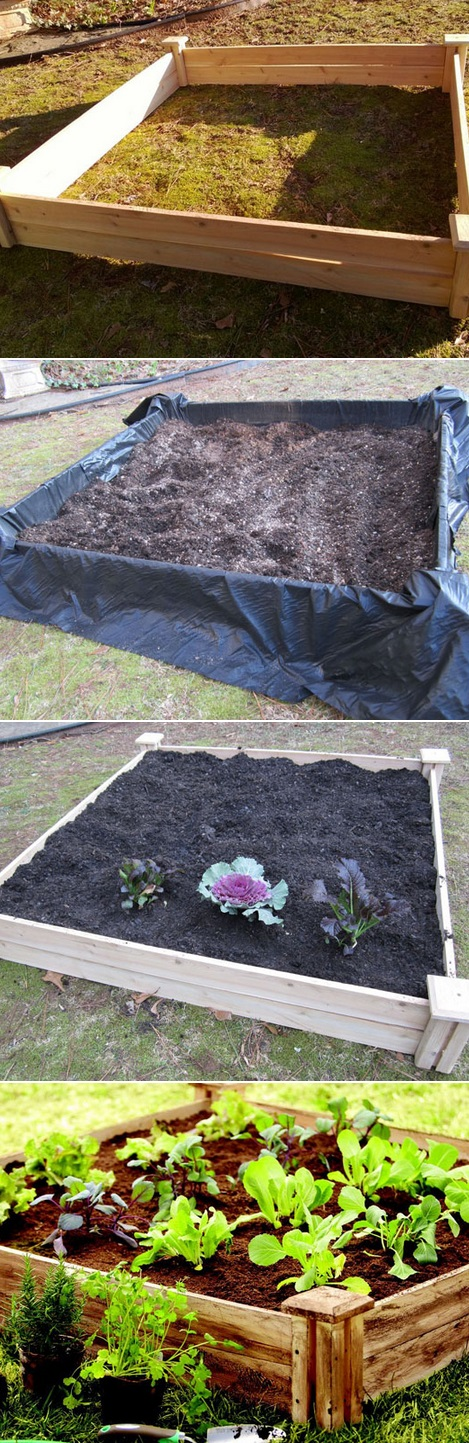 The Backyard Garden Diy raised garden beds