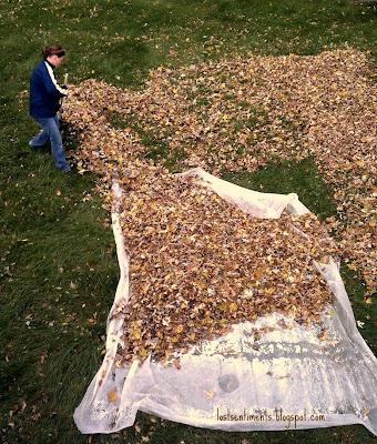 Rake leaves into a windrow—a pile shaped like a line—and then onto a tarp or old sheet for transport. Raking leaves onto a tarp also keeps the movement of the leaves down low, which reduces exposure to dust and other allergens in fallen leaves, says Pleasant.
