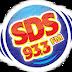 Ouvir a Rádio SDS FM 93,3 de Dourado - Rádio Online