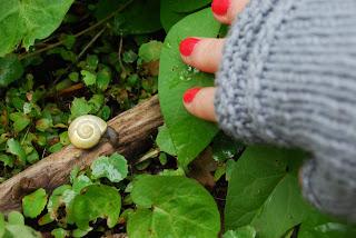 tricot mitaines laine coton phildar simples escargot