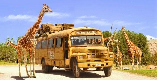 Africam Safari - Puebla, México