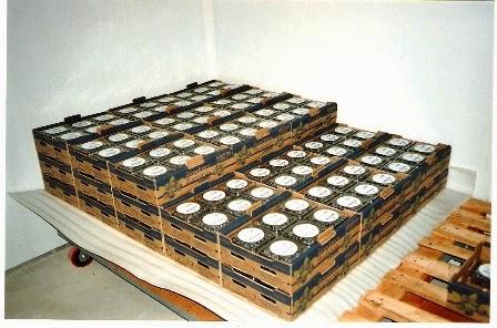 venta de arandano