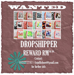 Dropshipper Wanted
