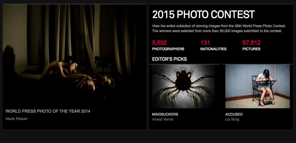http://www.worldpressphoto.org/awards/2015