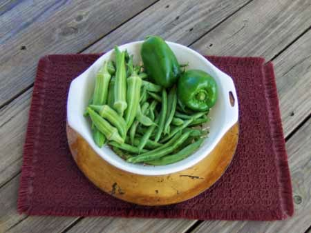 Okra beans and peppers from winter self-watering container garden
