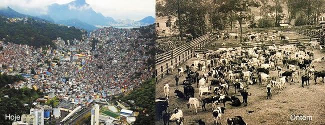 Favela da Rocinha, era uma fazenda de gados e logo após passa também uma parte do circuito de corridas de rua.