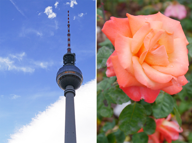 coco and vera, top vancouver travel blog, berlin, germany, travel guide, tv tower, flower