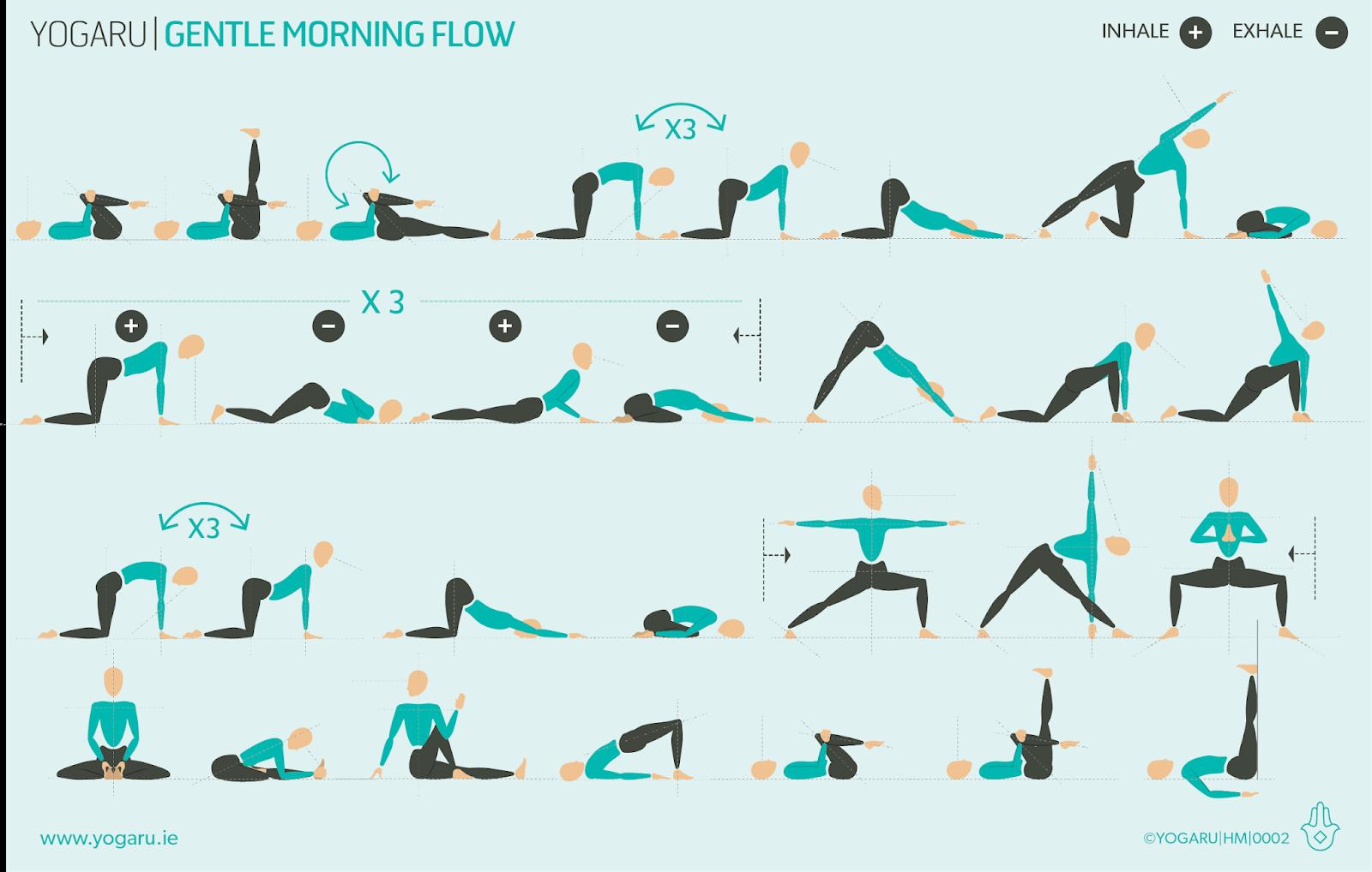 Gentle Yoga Flow For Seniors Spotgymyoga Org
