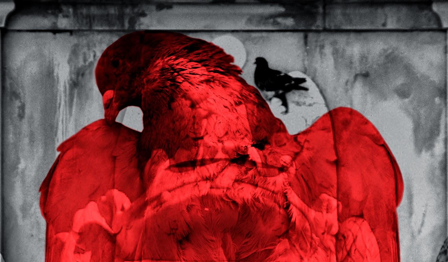 detalle de la maqueta águila roja paloma negra 1