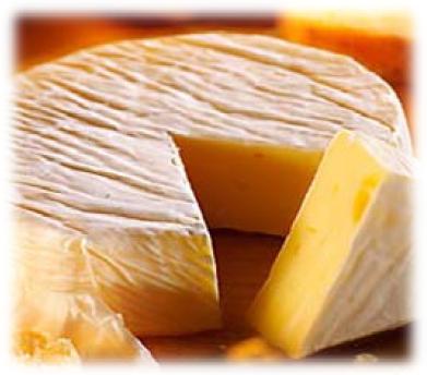 Películas y recubrimientos en quesos
