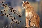 Savanna Kougar