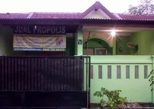 www.agenpropolismelia.comJual Propolis Melia - Agen Resmi Melia Propolis