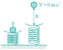 Tryout Ujian Nasional Fisika