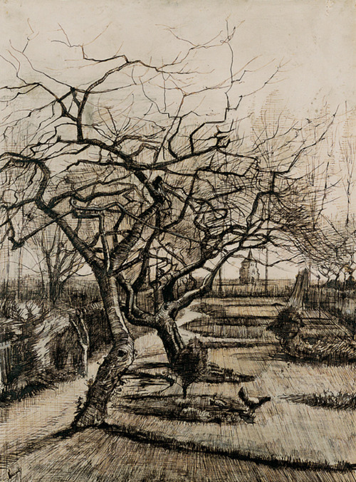 Van Gogh Drawings Trees Pen, Pencil, Paper—D...