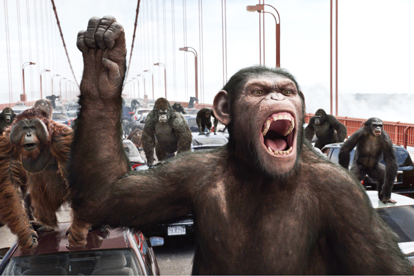 Excitable primates monkeys and muslims al fin next level evolving apes on rampage fandeluxe Choice Image