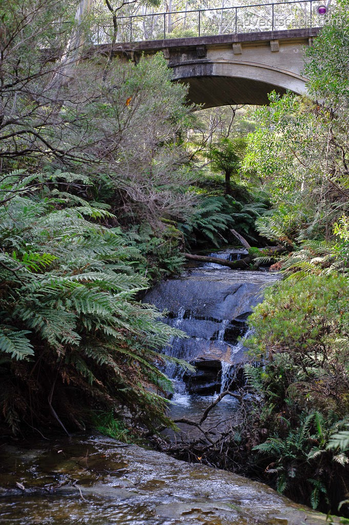 Philip Avellana, Australian Landscape Photographer, Leura Cascades, Leura, Blue Mountains, NSW, New South Wales, Australia, Leura Creek, bridge