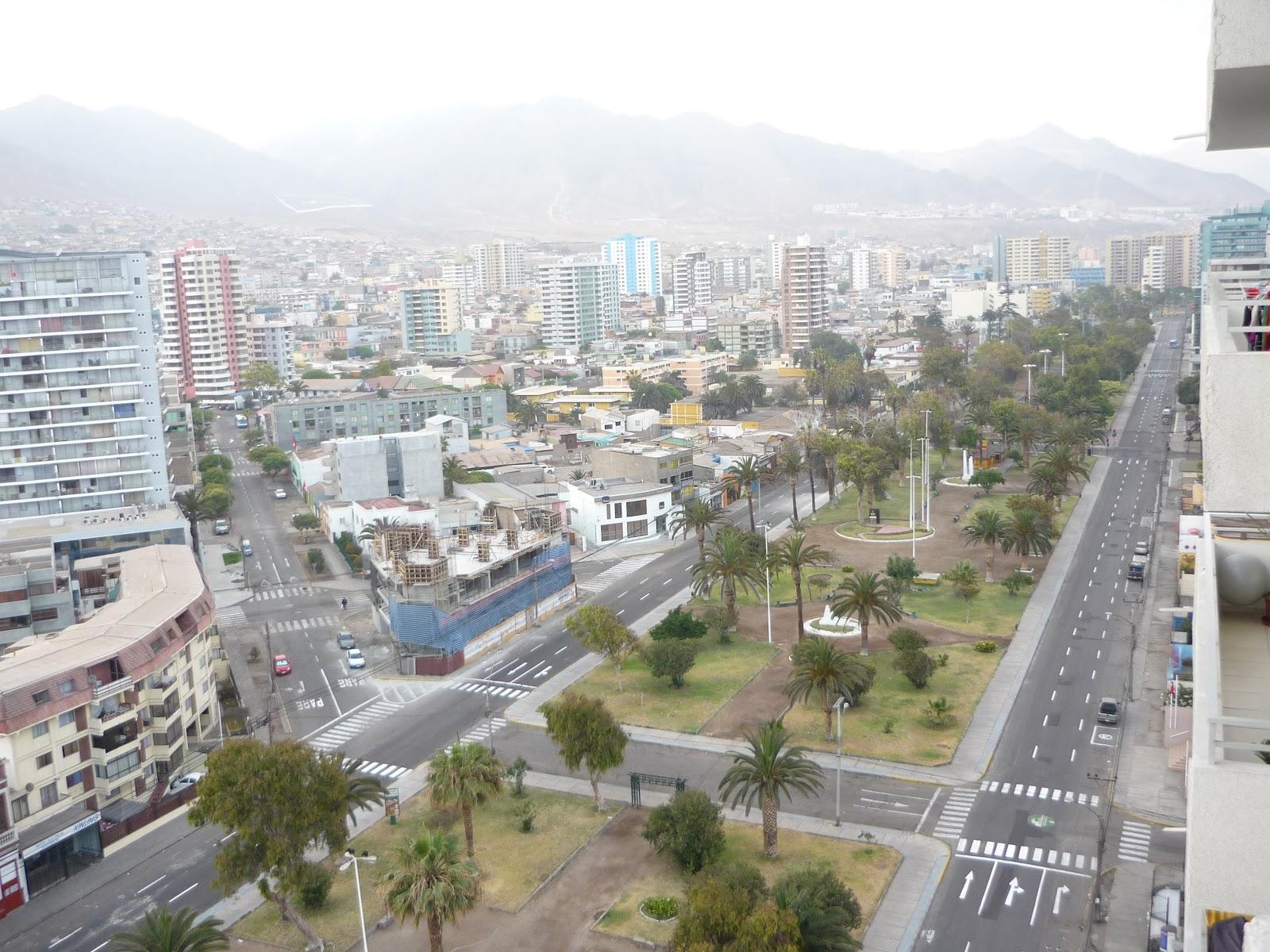 Doctorben tez antofagasta for Vivero antofagasta