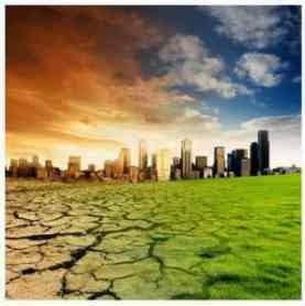 Pengaruh Perubahan Iklim Terhadap Pertumbuhan Tanaman