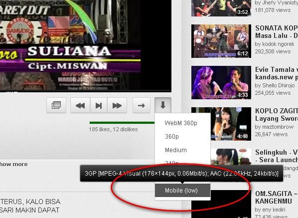 Okey Itulah Cara Cepat Mendownload Video Dari Situs Youtube