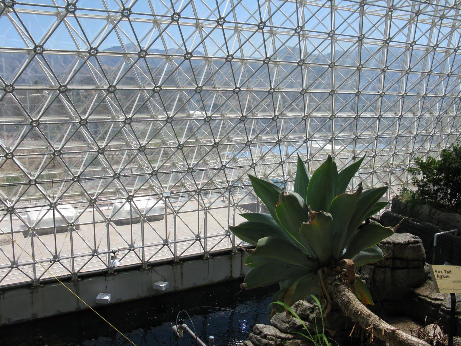 Biosphere n plants blogspot home.
