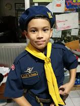 cheeky boy scout