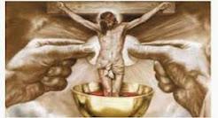 Assista a Santa Missa Dominical às 7 hs. (ao vivo)
