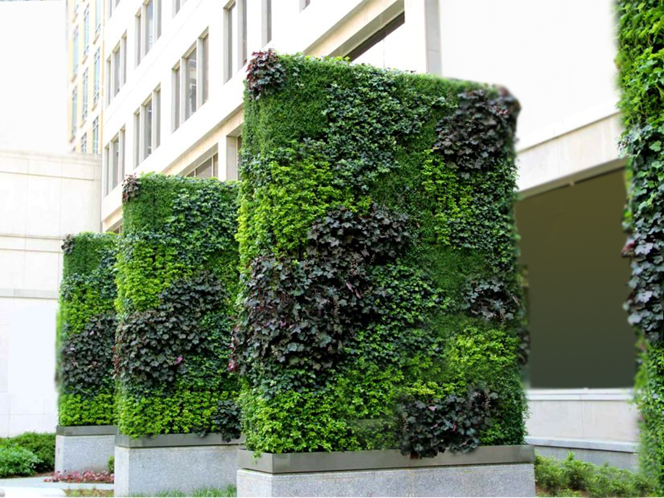 World class green wall vertical garden by technic garden Green walls vertical planting systems
