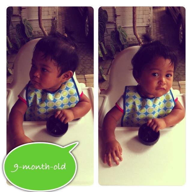 Kinan Nine Month Old