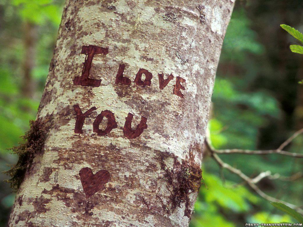 http://1.bp.blogspot.com/-Wgp61Gaao1E/TcRI0dlAIhI/AAAAAAAACAc/FhTRXxZhdb8/s1600/i-love-you-valentine-wallpaper.jpg